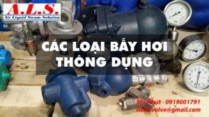 cac-loai-bay-hoi-thong-dung